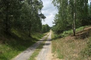 zdjecie,600,193738,20110629,park-krajobrazowy-cysterskie-kompozycje-krajobrazowe-rud-wielkich